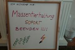 Colin Burmeister, Klasse 8d der StS Bergedorf