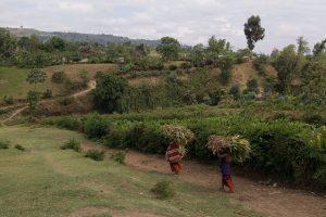 640px-Tanzanian_farmers